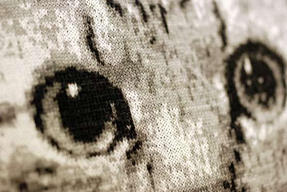 うちの猫の目をデザイン