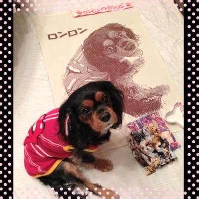 キャバリア愛犬オリジナルプレゼント