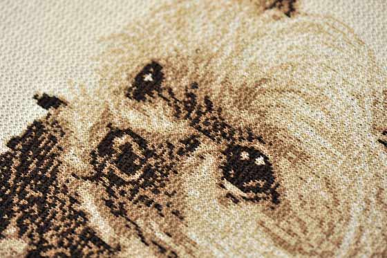 編物のヨーキー