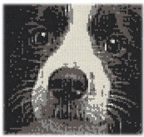 編み物で作ったボーダーコリー