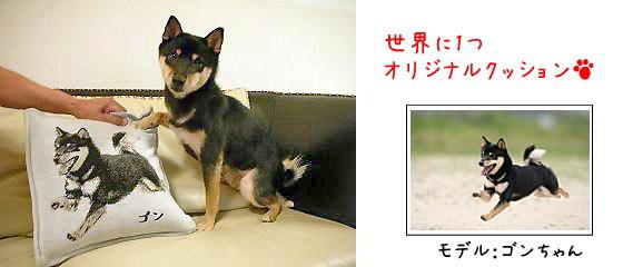 柴犬オリジナルグッズ
