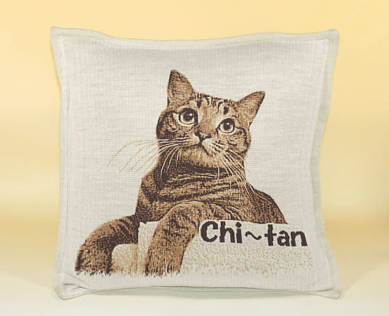 Chi~tan