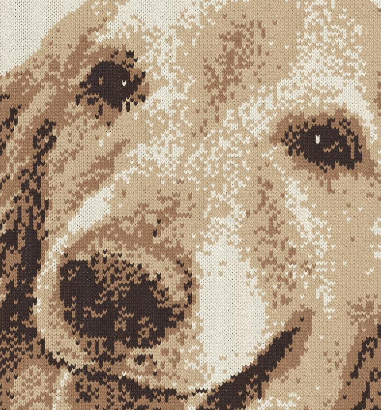 編み物で愛犬を描く