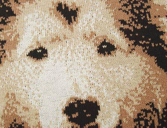 愛犬を編んだところ