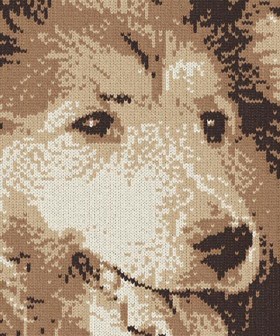 編物で愛犬を描く
