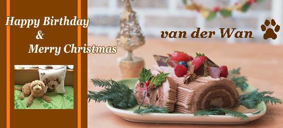 誕生日とクリスマスのケーキ