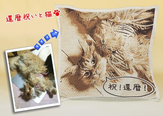 猫と祝う還暦祝い