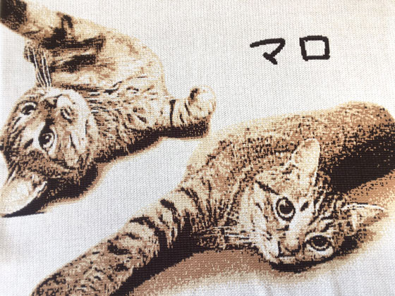 猫の編みこみグッズ