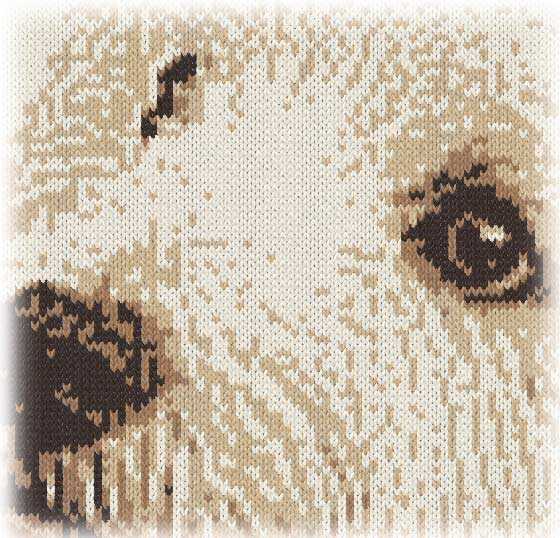 編み物のウェスティ