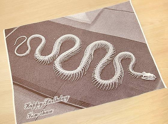 蛇好きな人へのプレゼント