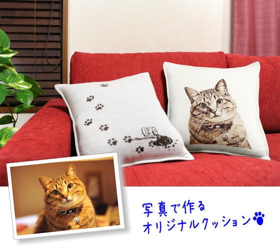 猫のオリジナルクッション