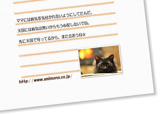 天国の猫からの手紙