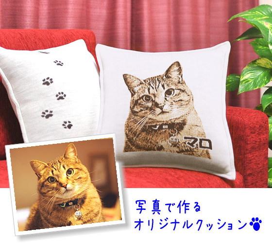 猫オリジナルクッション