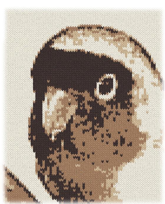 編み物の小鳥